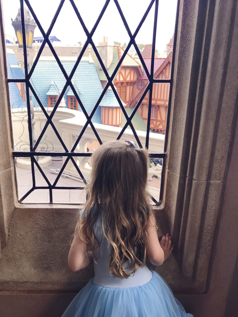 looking out the window of Cinderella's Castle