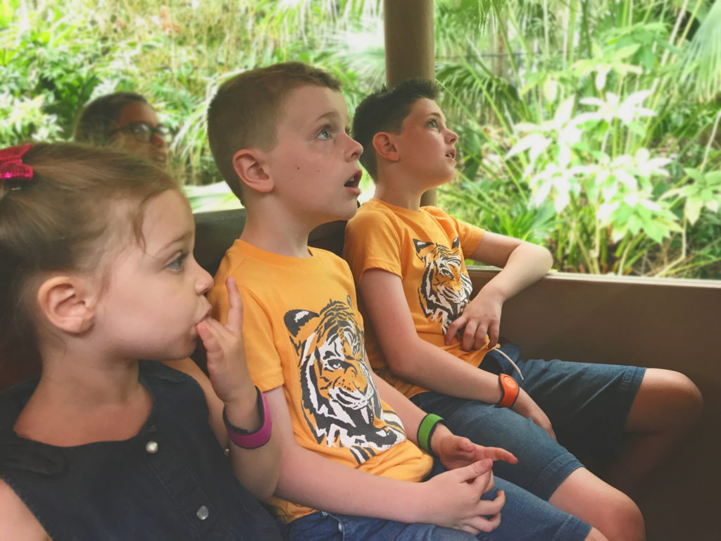 kids on the Kilimanjaro Safari