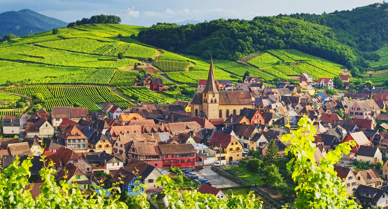 alsace_france_vineyards